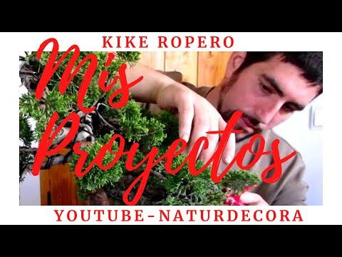 Tango Licks // Tutoriales por Julián Graciano //ACORDE NAPOLITANO- RELACIÓN ESCALAR from YouTube · Duration:  6 minutes 13 seconds