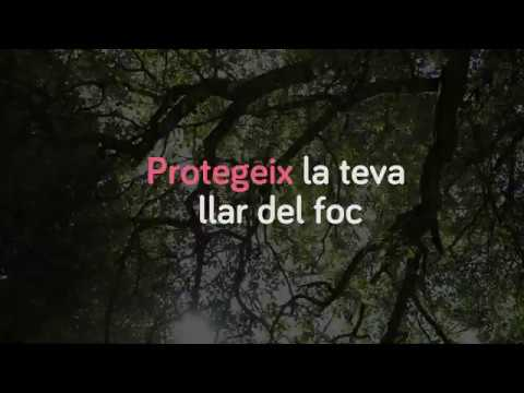 Protegeix la teva llar del foc - Defensa dels jardins forestals