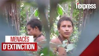 Tribu d'indigènes menacée : une image rare