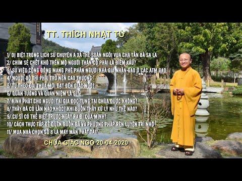 Vấn đáp Phật pháp ngày 20-04-2020 (HD)   TT. THÍCH NHẬT TỪ