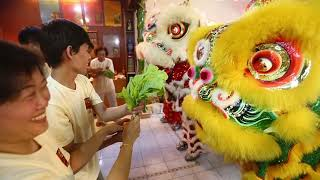 2019 : Hong Wei Lion and Dragon Dance Association Malaysia