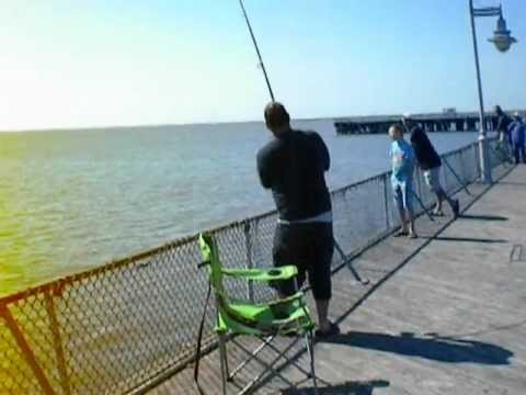 Lewes beach pier shark youtube for Lewes de fishing report