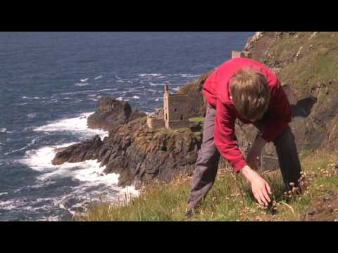 Botallack Mine 'Poldark' Walk with The National Trust