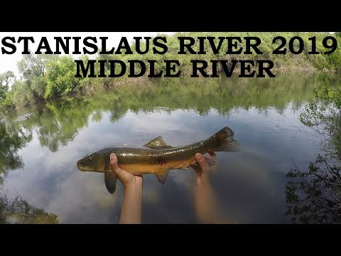 JANUARY | STANISLAUS RIVER FISHING