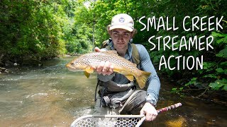 Big Browns in Small Water - Our Water Adventure Series Ep. 6