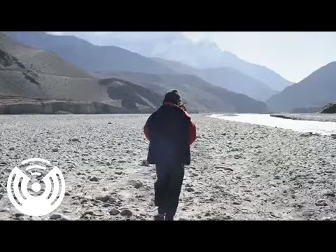 Walkmen - Four Provinces