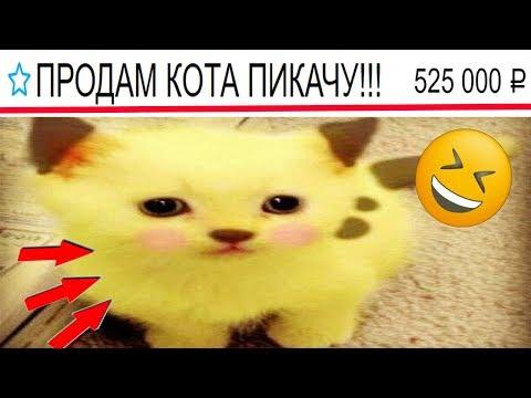 moyareklama ru знакомства