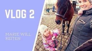 Marie will auf Honorio reiten |VLOG 2