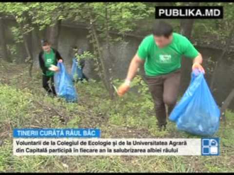 Peste 50 de tineri au participat la curăţarea albiei râului Bâc