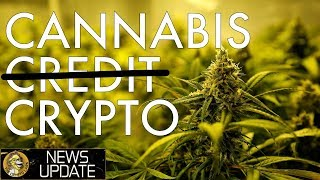 Cannabis Needs Crypto, Restaurants Adopt BTC, Elastos TV, Petro & Yale - Bitcoin News