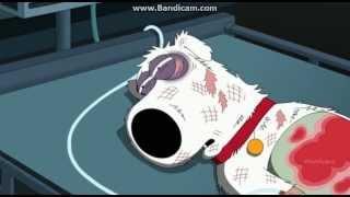 Family Guy - Season 12 Episode 3 - Brian's Death