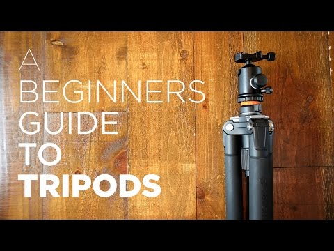 Beginners Guide to Tripods - Benefits, How to Use, Recommended Tripod Gear