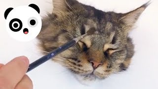 Incredibly Realistic Cute Cat Painting | Bored Panda Animals