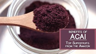 Benefits of Acai, One of the Top Fruits from the Amazon