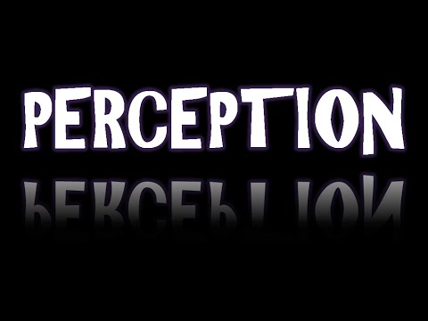What Is Perception? 2 Key Points To Remember