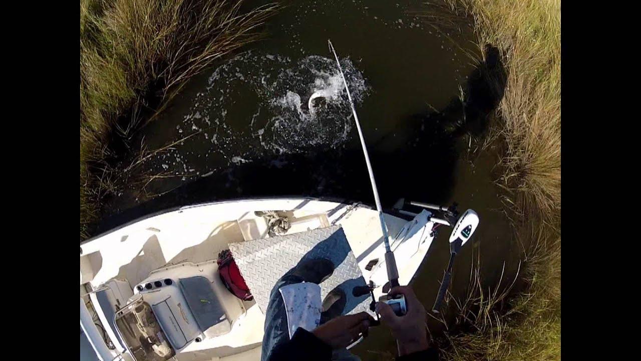 Sight fishing redfish in rigolets marsh 10 26 2013 youtube for Rigolets fishing report
