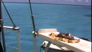 VK9ZM/VK9ZW  Mellish Reef 0202