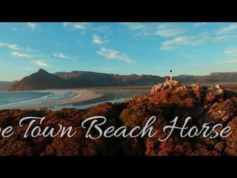 Cape Town Beach Horse Rides