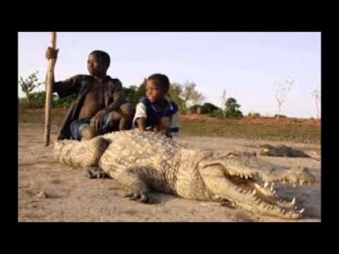 Discover Burkina Faso