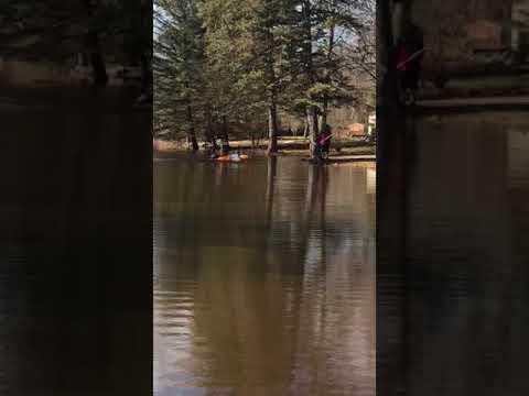 Children play in the flooded Red Cedar River near Lansing