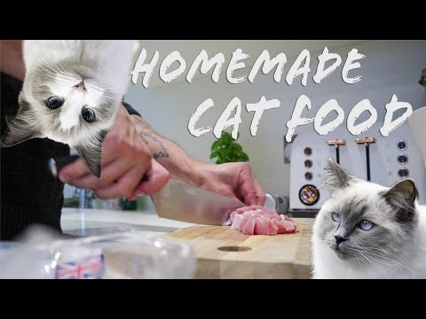 How we make RAW food for our Ragdoll kittens| Easy recipe for raw diet