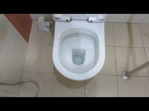Close Coupled 2013 Johnson Suisse toilet