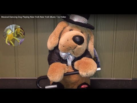 Musical Dancing Dog Playing New York New York Music Toy Video