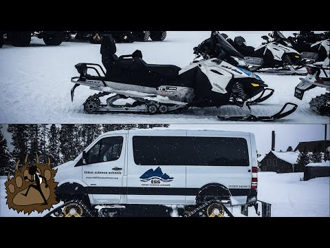 SNOWMOBILE vs SNOWCOACH Tour | Winter in Yellowstone National Park