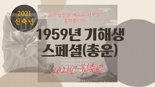 1959년생 기해생 스페셜(2021년 신축년 총운및 보충)