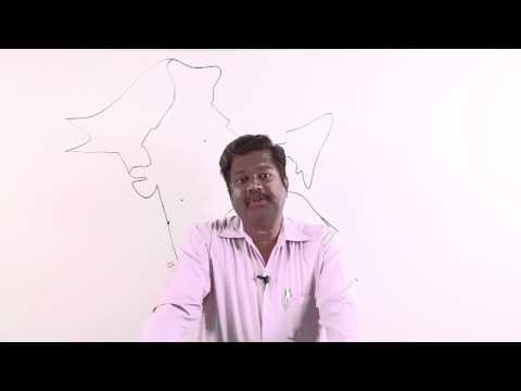 Vijaynagar's Empire.