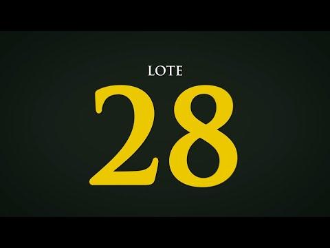 LOTE 28   CSCQ 263