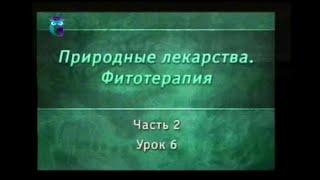 Фитотерапия. Урок 2.6. Лекарственные растения. Нервная и сердечно-сосудистая системы. Часть 2