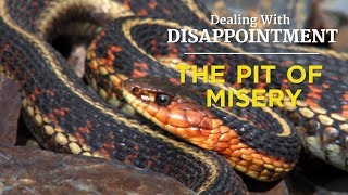 Dealing With Disappointment The Pit of Misery