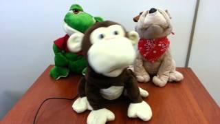 Обезьянка Мэнни поет про обезьянку