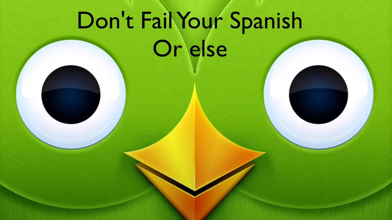 Duolingo Owl Meme Youtube