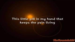 Tori Amos And Damien Rice - The Power Of Orange Knickers Lyrics