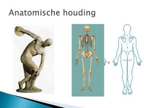 TRK 2.1 Inleiding Anatomie