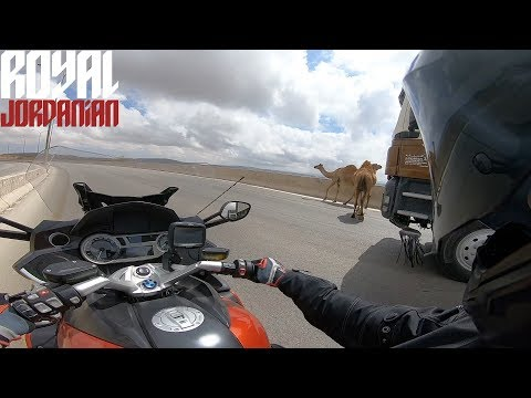 Camel told his friends about his close calls with car/truck and to watch it on YouTube