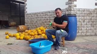 """САМОГОН из ДЫНИ. """"БРАГА"""" Часть 1"""