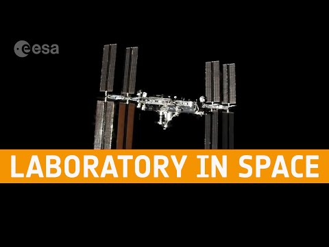 Meet the Experts: Laboratory in Space