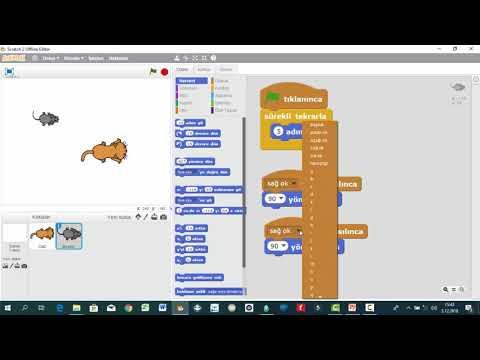 #Scratch Örnekleri-Kedi Fare Oyunu
