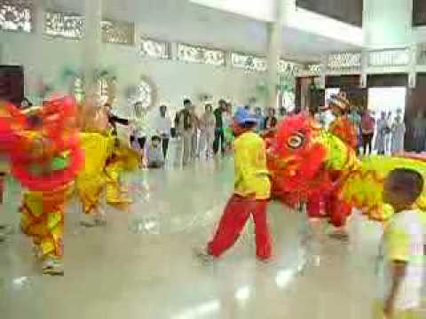 Mua lan chua Hoang Phap xuan Canh Dan 2010