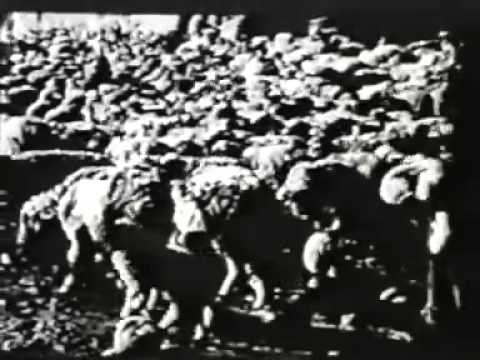 H.A. Lettow, Ernst Schäfer: Geheimnis Tibet (1943) (filmed 1938-1939) Subtitled