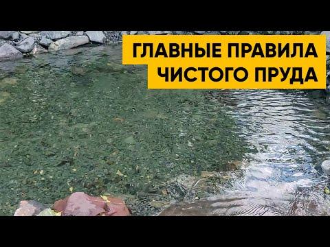 ПРОЗРАЧНАЯ ВОДА В ПРУДУ. Как построить кристально чистый пруд? Пример прозрачного пруда.