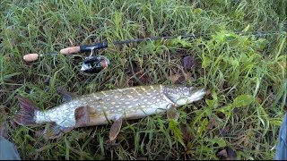 видео рыбалке на днепре