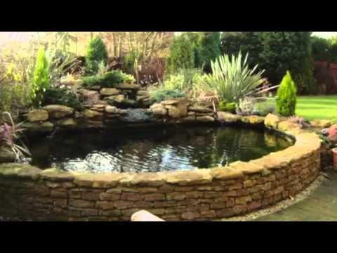 Garden ideas pond and water feature ideas by any pond for Pond feature ideas