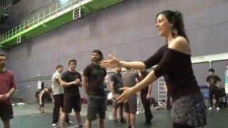 видео Cirque du Soleil шоу JOEL