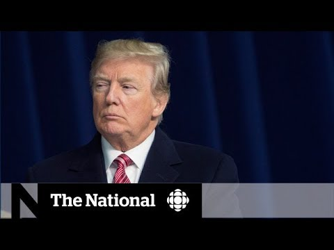 Trump is undermining American democracy and Canada should be concerned, expert says
