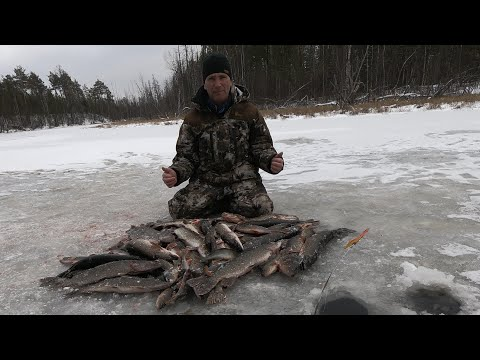 ВОТ И ПОКОРЁН ПЕРВЫЙ ЛЁД 2019-2020! Крутое открытие зимней рыбалки! Ловля щуки  по перволёдке!