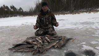 ВОТ И ПОКОРЁН ПЕРВЫЙ ЛЁД 2019 2020 Крутое открытие зимней рыбалки Ловля щуки по перволёдке